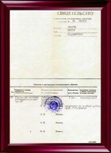 Первичная специализация по иглорефлексоотерапии. Харьков 1990.