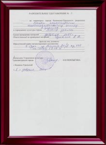 Разрешение. Каменск-Уральск 2000.
