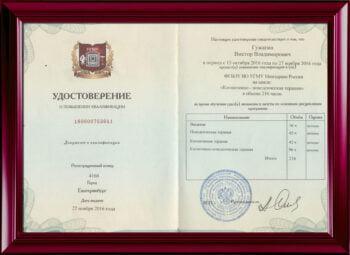 Повышение квалификации. Когнитивно-поведенческая терапия. Екатеринбург 2016.